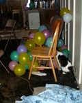 In the aftermath, the cat thinks Ana doesn't notice as he finds the balloons and their curly ribbons.