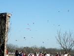 02 Zilker Kite Fest 05.JPG