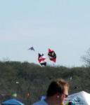 05 Zilker Kite Fest 05.JPG