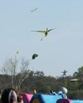 06 Zilker Kite Fest 05.JPG