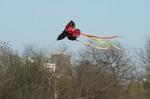 14 Zilker Kite Fest 05.JPG