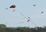 15 Zilker Kite Fest 05.JPG
