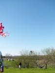 16 Zilker Kite Fest 05.JPG