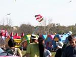18 Zilker Kite Fest 05.JPG