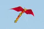 29 Zilker Kite Fest 05.JPG