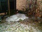 Hailstones in the Frontyard: These took nearly 3 days to fully melt, and in 70F+ temperatures.