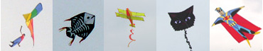 KiteTypes.jpg