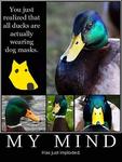 ducksdogmasks