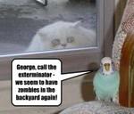 LOLcat Zombiecat